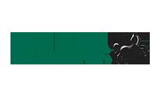lloyds-bank-logo-my-digital
